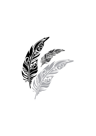 delicate feathers Vector illustration isolated on white background.
