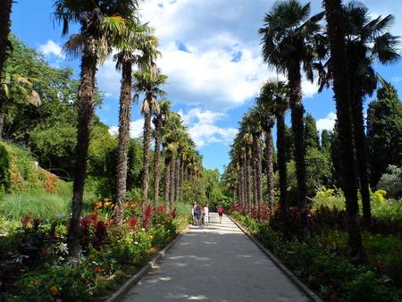 botanical gardens: Nikitinsky Botanical Gardens in Yalta
