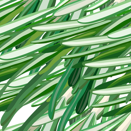 useful: rosemary pattern. Useful green herbs. delicious seasoning. tasty flavoring for food. Vector illustration.