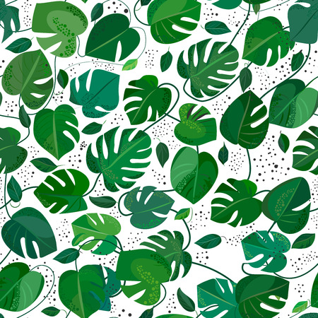 philodendron: Monstera leafs seamless pattern. Tropical vector illusration Illustration