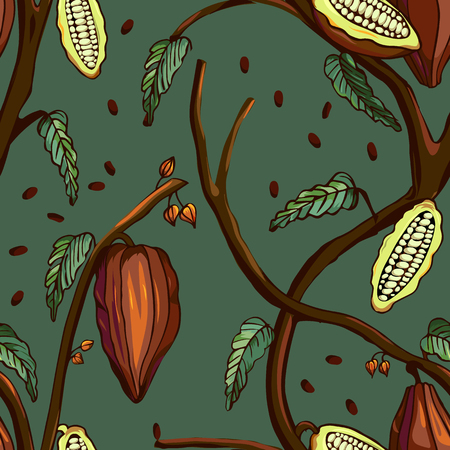 Cocoa tree pattern. Seamless background of cocoa tree with beans and leafs. Vector illustration