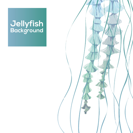 blubber: Modern Background with detailed transparent jellyfish. Sea jelly on white background. Useful for banners, broshures, covers. Vector illustration