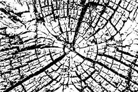 crack: Old Wood rings saw cut tree trunk background. Vector illustration. Illustration