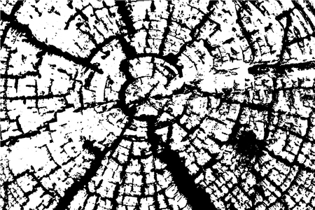 plywood: Old Wood rings saw cut tree trunk background. Vector illustration. Illustration