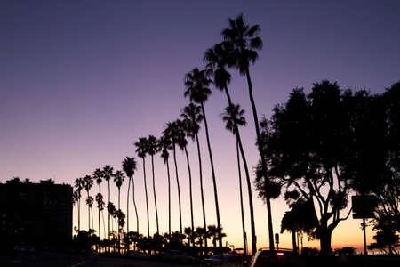 La Jolla Palms photo