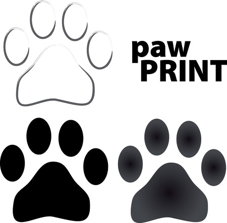 animal paw prints: paw prints