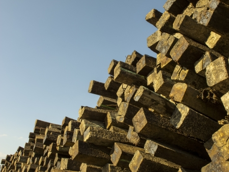 wood railroad: Never ending wood pile Stock Photo