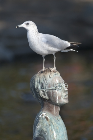 Bird perched on top of a statue of a boy