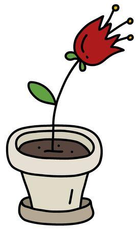 Red flower in the light flowerpot
