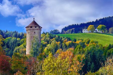 Antigua torre del castillo medieval en una colina en el bosque en Europa en un día soleado.