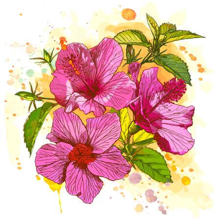 Hibiscus Flower - Vektor Aquarell malen. Elemente auf separaten Ebenen