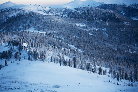 winter mountain landscape in fores photo