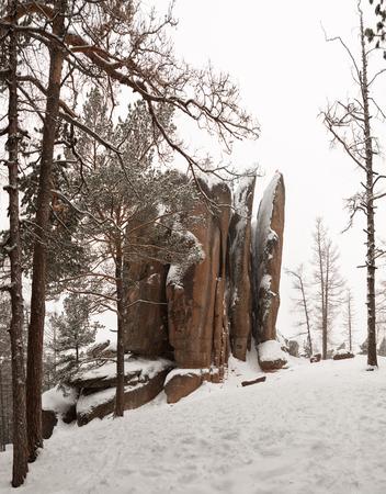 Reserve Krasnoyarsk pillars in the winter. Feathers Pillar Фото со стока