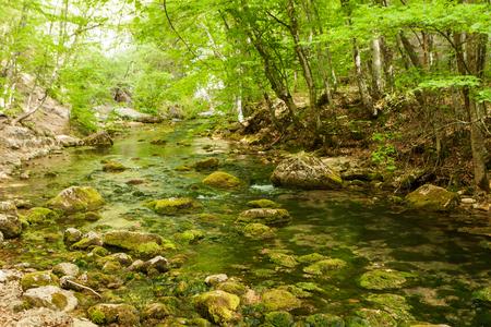 Mountain river Ulu-Uzen East or Megapotamo on the southern coast of the Crimea in the gorge Khaphal, Russia Фото со стока