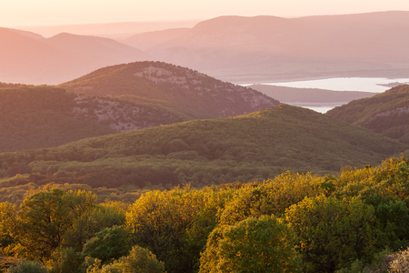 Magic spring background with midges in the Crimean mountains at sunset. Фото со стока