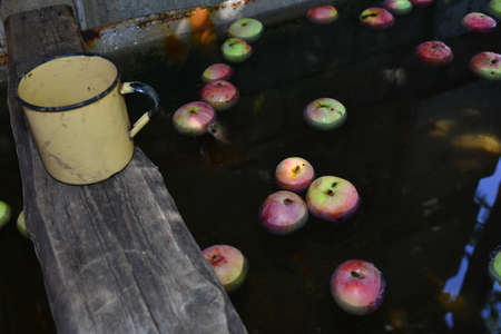 Fresh red apples floating on water in container