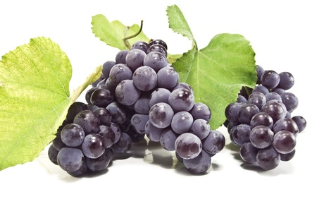 bunch of black grape on white