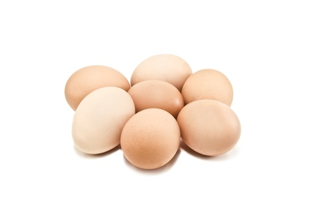 chicken eggs on white background photo