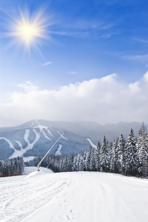 ski resort under blue sky photo
