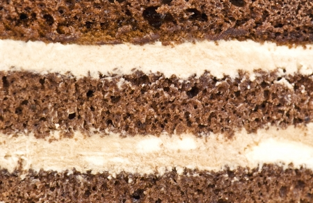 cake texture in the photo