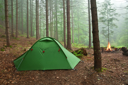 tent in the mist forest photo