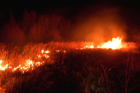 uncontrolled: night uncontrolled grass fire (wildfire)