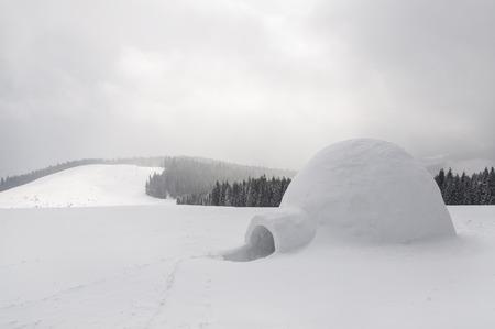 igloo: snow igloo in the high mountain