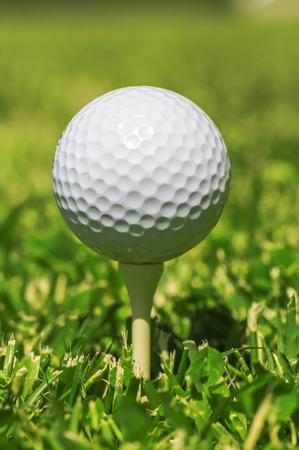 golfball: white golf ball on the green grass Stock Photo