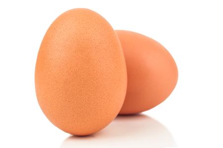 births: two raw chicken eggs on white background