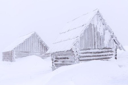 snow drift: abandoned old cabins in snow drift