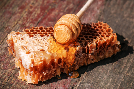 piece of honeycomb with special stick