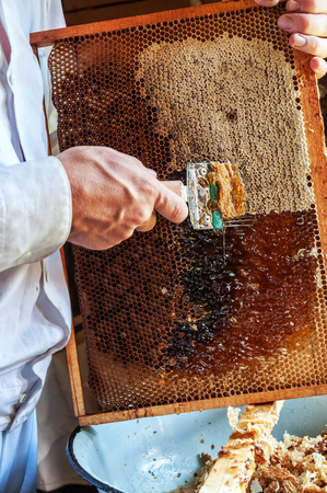 beekeeper open honeycomb with special tool