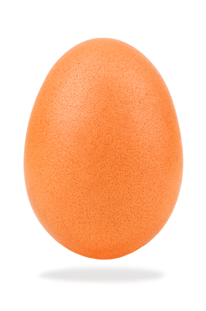 brown chicken egg on white background Stock Photo