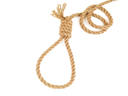 rope knotted in noose isolated on white