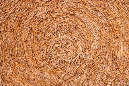 dry hay, bale as a texture