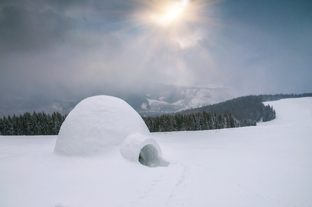 real snow igloo under sunlight in winter Carpathians mountain Zdjęcie Seryjne
