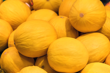 yellow sweet melons as a texture
