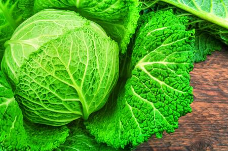 ripe and lush green savoy cabbage Stock Photo