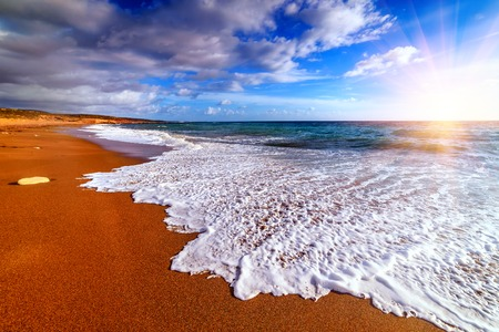 beach with golden sand on sunset Banque d'images - 105919408