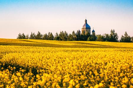 church in yellow rape field on sunset