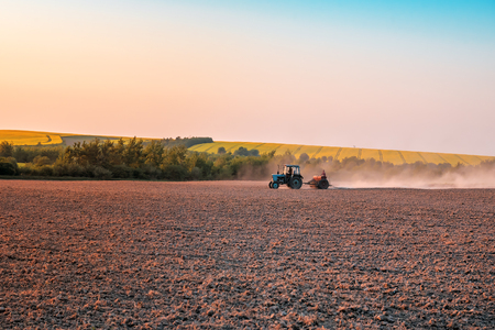 the tractor sows the field on sunset