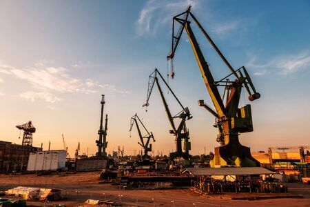 Large and huge port cranes at sunset in Gdansk.Poland Stockfoto