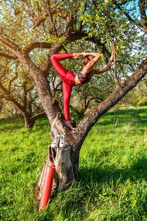 girl practicing yoga on the tree Banque d'images - 126379938