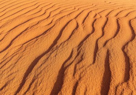 desert sand waves as a texture