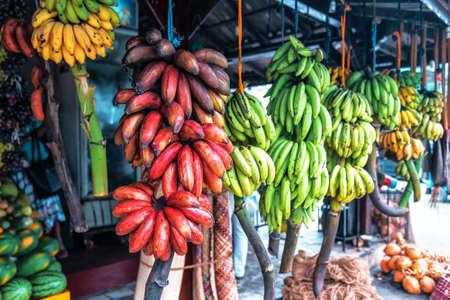 different varieties of bananas in the tropical fruit market on Sri Lanka 版權商用圖片