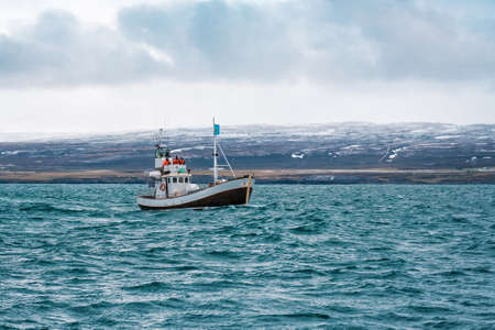 fishin boat in open north ocean (sea), whale tourism 版權商用圖片