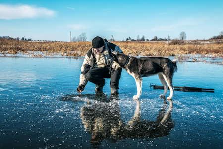 fisherman with a siberian husky catches perch on ice 版權商用圖片