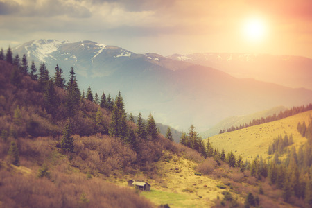 Landscape in the mountains: snowy tops and spring valleys.Fantastic evening glowing by sunlight.
