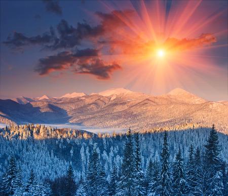 Amanecer de invierno colorido en las montañas. brillante mañana fantástica por la luz solar. Vista de la parte superior de niebla y nieve. Foto de archivo - 48521960