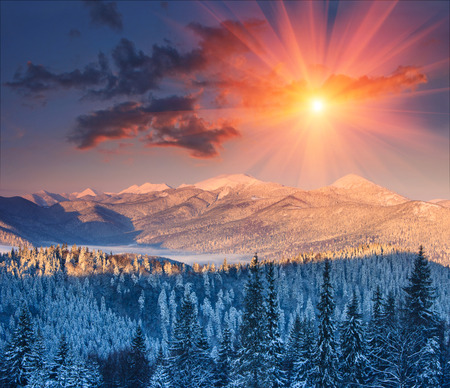 Colorful winter sunrise in the mountains. Fantastic morning glowing by sunlight. View of the fog and snow tops.